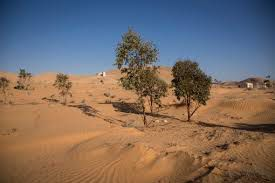 Drought and Desertification