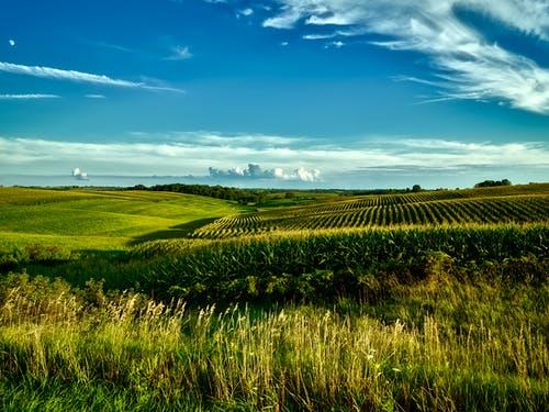 Agricultural Landscapes